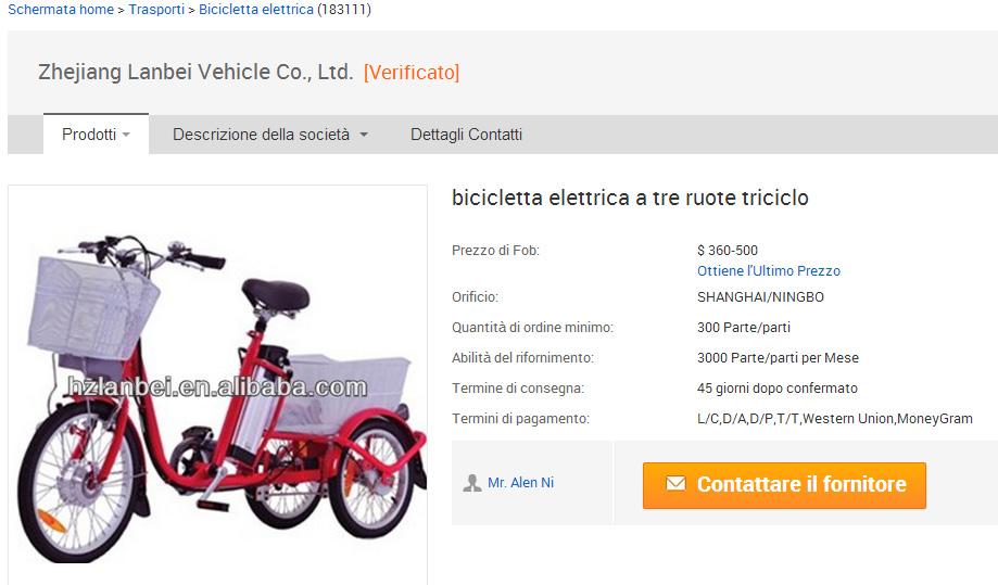 bicicletta elettrica a tre ruote