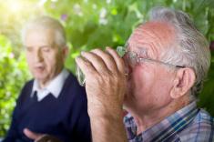 stock-photo-64515497-senior-men-in-garden
