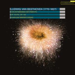 Terpsycordes_Beethoven