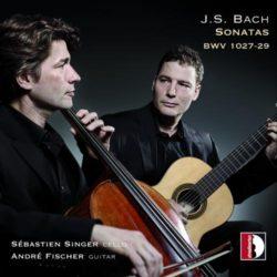 Singer, Fischer