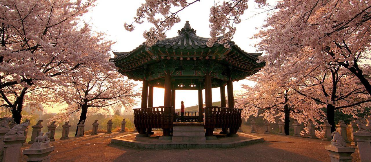 risalente Corea del sud