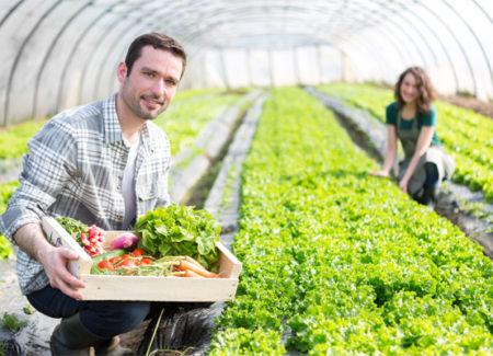 giovani-agricoltori-in-serra