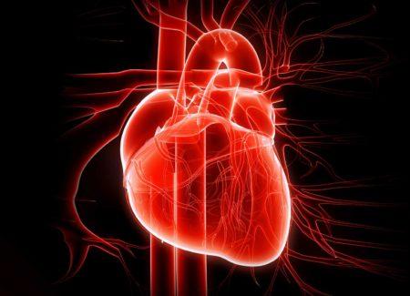 cuore batte