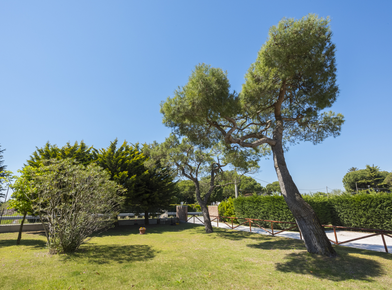 Foto giardini fioriti finest cotswolds with foto giardini fioriti free di ennio neri with foto - Immagini di giardini fioriti ...
