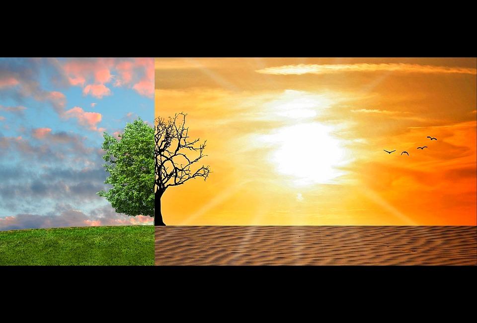 Ambiente e salute