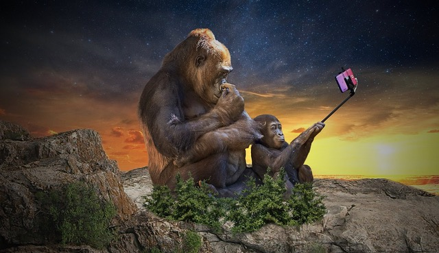 wildlide selfie